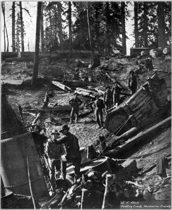 W. T. Fitch - Redwood Loggers at Pudding Creek
